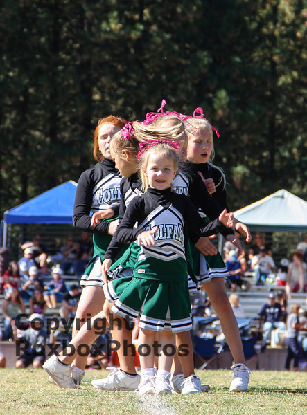 PeeWee Cheer 101913-24