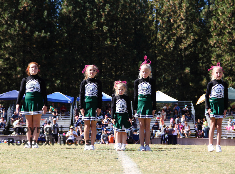 PeeWee Cheer 101913-20