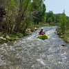 Verde River Float Trip, Tapco to Tuzi, 6/16/21
