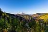 Mt Rainier from the Kelly Butte Trailhead