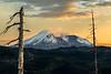 Mt St Helens, 35th Anniversary