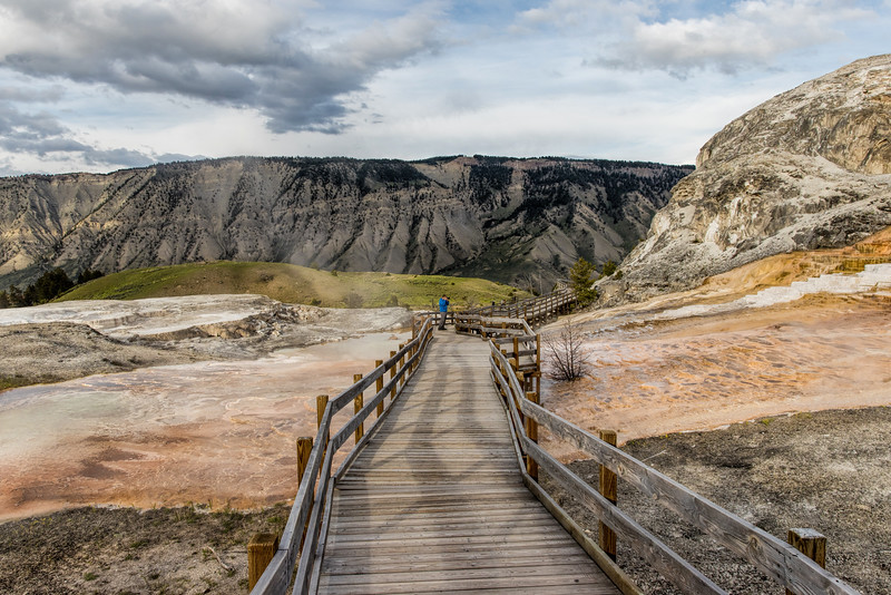 Boardwalk at the Mammoth Hot Springs