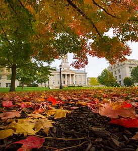 campus_fall_old cap_stu_2015_9941b