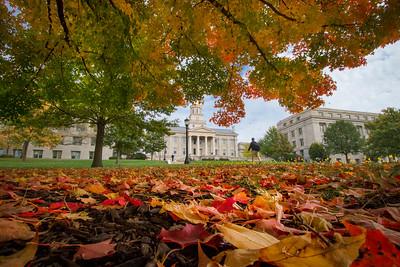campus_fall_old cap_stu_2015_9949