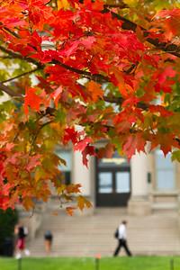 campus_fall_old cap_stu_2015_9821