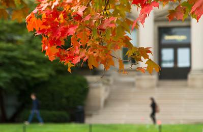 campus_fall_old cap_stu_2015_9815
