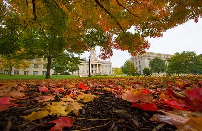 campus_fall_old cap_stu_2015_9941