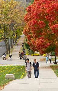 campus_fall_old cap_stu_2015_9894