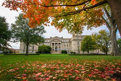 campus_fall_old cap_stu_2015_9783