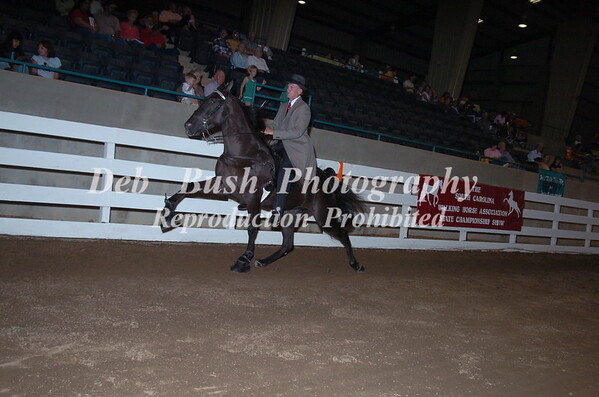 CLASS 38 THREE YR OLD AMATEUR MARES & GELDINGS