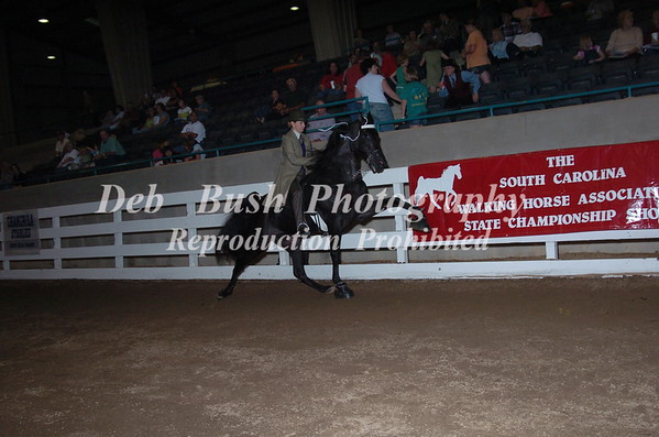 CLASS 45  PONY AMATEUR 18 AND OVER SPECIALTY