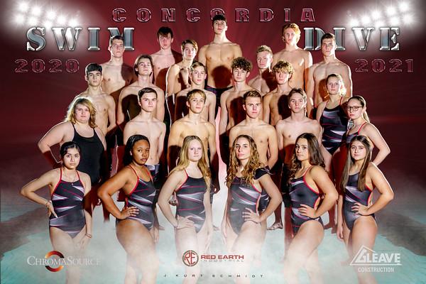Swim Poster Master 12x18 copy
