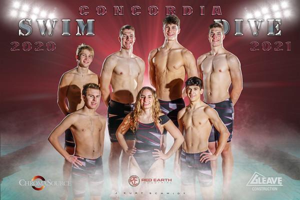 Swim Poster Master 12x18 Seniors Back copy