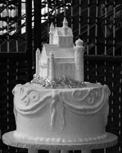 CAKE (2 of 22)