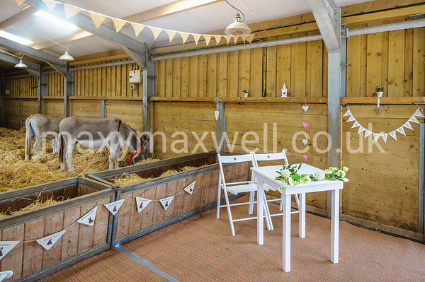 The Donkey Sanctuary Sidmouth Wedding
