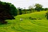 Strange site on a Horse Farm