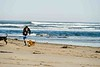 Gourlay_Dogs_0008