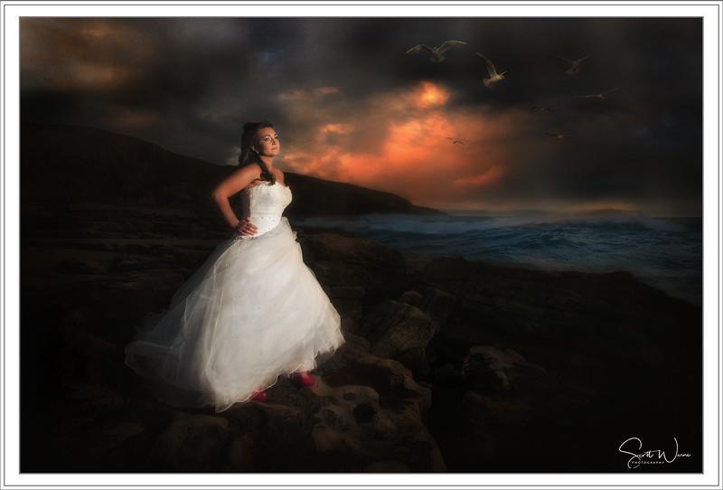 express the dress by scott warne 1