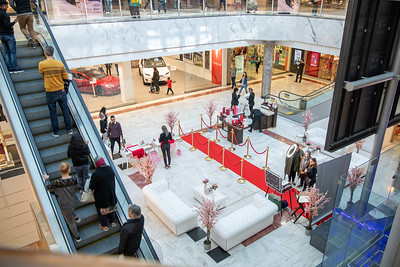 23_03_19__BRENT_CROSS_002