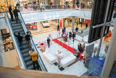 23_03_19__BRENT_CROSS_001
