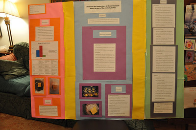 Trevor Middle School Science Fair, Spring, 2013.  PHOTO BY: Cynthia Carris Alonso http://www.photosolutionsnyc.com/