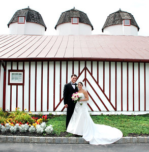 Catrambone / Schaffer ~ wedding ~ Normandy Farm