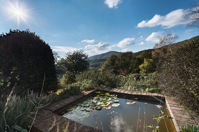 Umbrian Garden-4