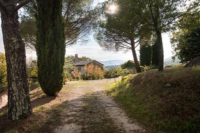 Umbrian Garden-9