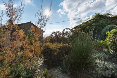 Umbrian Garden-8