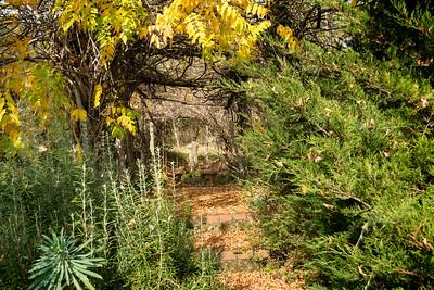Umbrian Garden-13