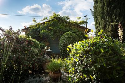 Umbrian Garden-10