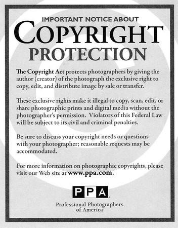 NoticeofCopyright306