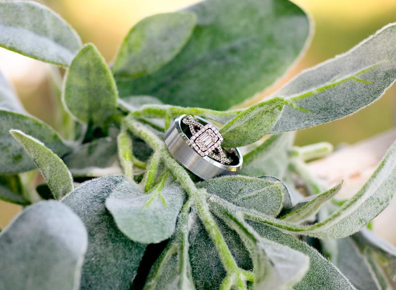 Ciara & Sage Wedding--7