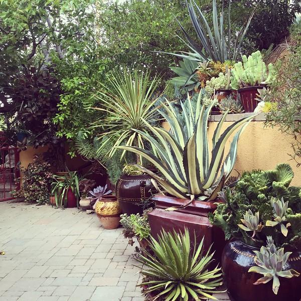 Design & installation by Sacred Space Garden Design, Inc.