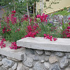 Design & Installation by Sacred Space Garden Design Inc.