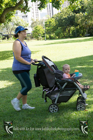 FIT4MOM Stroller Barre Zoo Day
