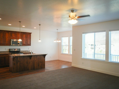 Living Room/Kitchen/Dining