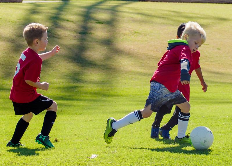 10 15 17 Shin Kickers Soccer-13