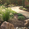 Drought Tolerant Plantings