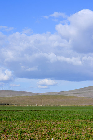 February Clouds - Livermore, CA