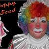 Gail Poppy Seed 4x6 cop