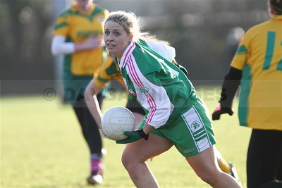 Baltinglass Ladies Charity Match 2014