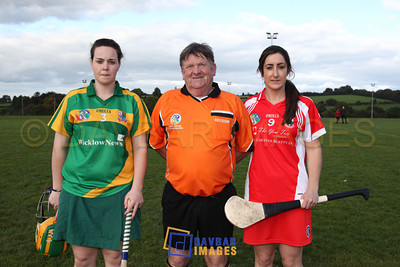 Glenealy Senior Camogie Championship Final 2012