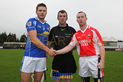 Glenealy Leinster IHC 2011