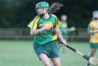 Knockananna Senior Camogie 2015