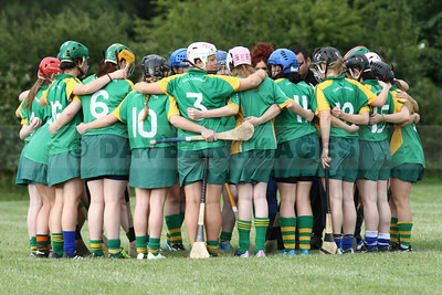 Knockananna Senior Camogie 2014