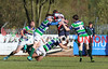 Cooke 24 Grosvenor 24, Ulster Rugby Championship, Satuirday 19th October 2019