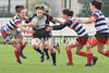 Blackrock College RFC 12 Cooke RFC 26, Womens AIL, Saturday 26th Oct 2019