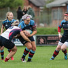 Malone 24 Belfast Harlequins 0 at the Malone Festival of Rugby