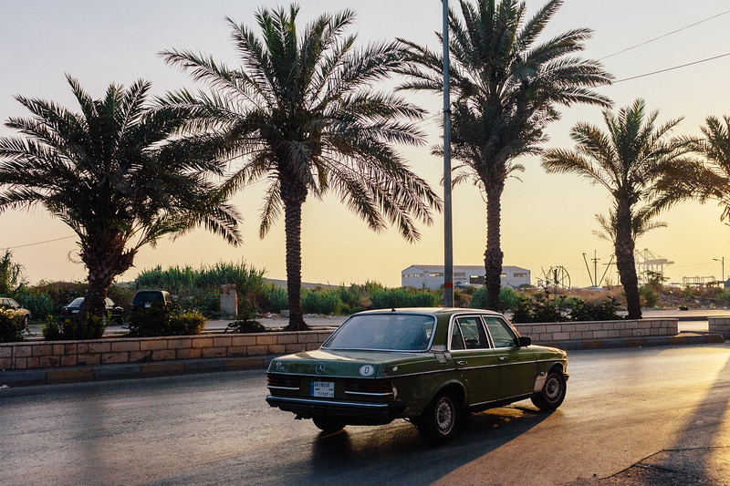 A common view in Lebanon - palms and youngtimer Mercedes-Benz cars.